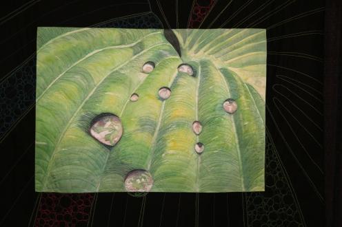The Last Drop - by Lisa Marie Sanders , Cocoa Beach Florida, USA