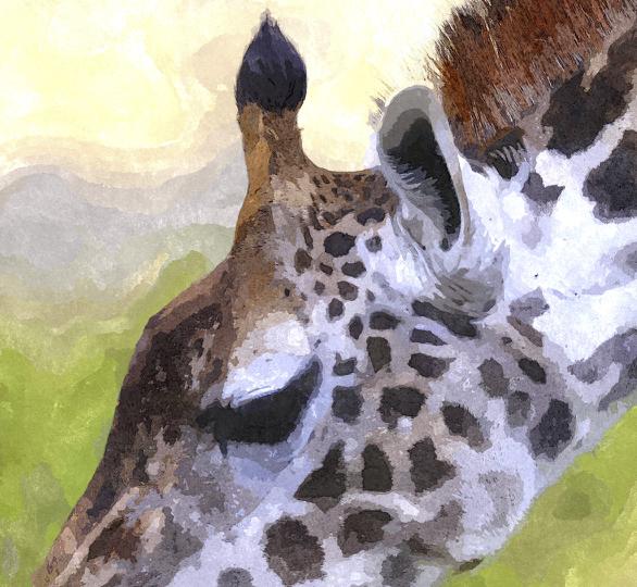 Giraffe - Version 2