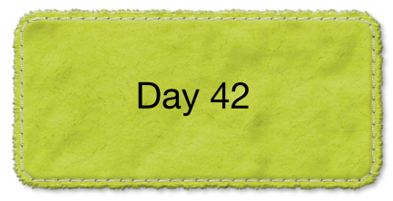 Day_41