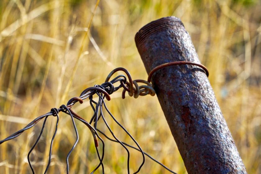 wire 6